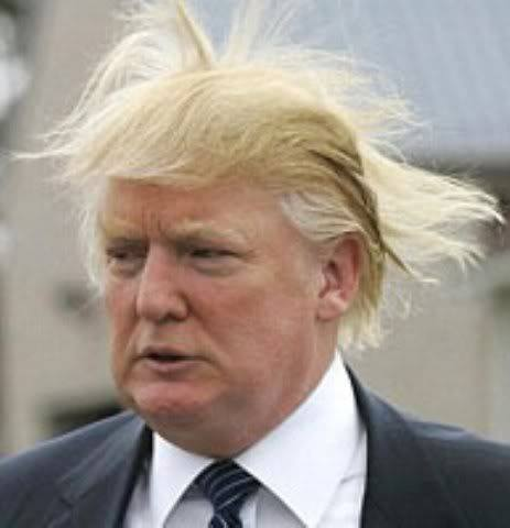 donald with flying hair